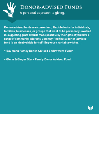 donor advised funds graphic