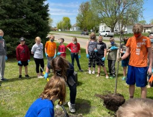 Arbor Day tree planting at Davis Elementary